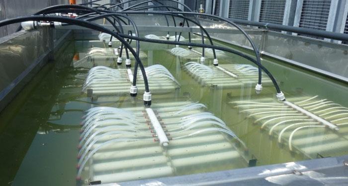فرآیند راکتور بیولوژیکی غشایی و جداسازی غشایی